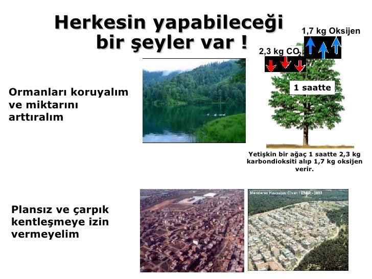 Ormanları koruyalım ve miktarını arttıralım Plansız ve çarpık kentleşmeye izin  vermeyelim Yetişkin bir ağaç 1 saatte 2,3 ...