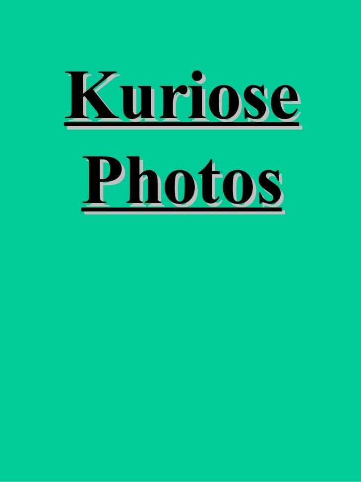 Kuriose Photos