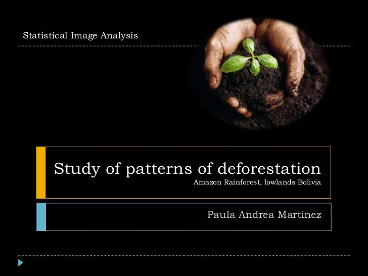 Study of patterns of deforestation Amazon Rainforest, lowlands Bolivia<br />Paula Andrea Martinez<br />Statistical Image A...