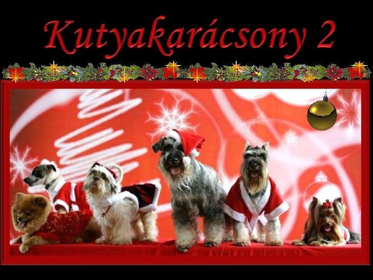 Kutyakarácsony 2<br />