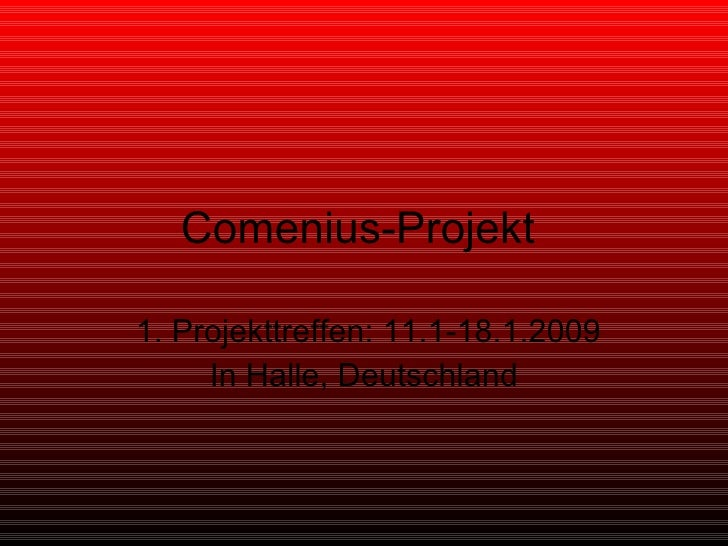 Comenius-Projekt  1. Projekttreffen: 11.1-18.1.2009 In Halle, Deutschland