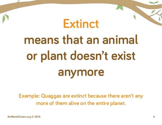 endangered animals essay introduction