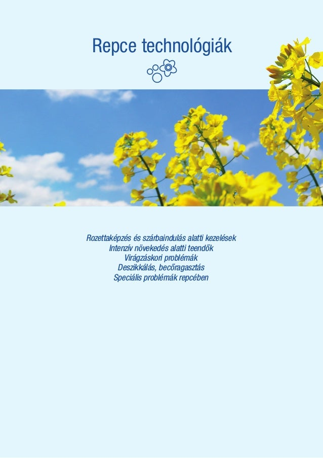 ALAPTECHNOLÓGIA Rozettaképzés és szárbaindulás alatti kezelések Intenzív növekedés alatti teendők Virágzáskori problémák D...