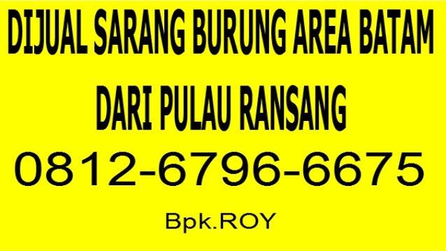 0812-6796-6675(TSEL/WA) Jual  walet Sarang Burung Area Batam