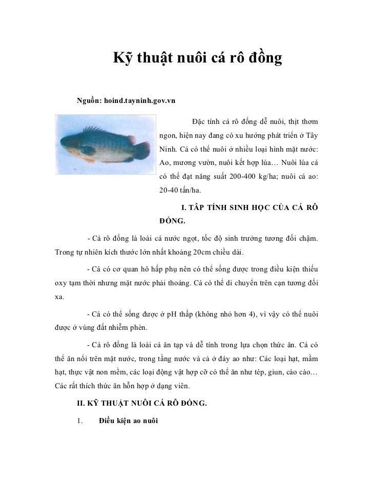 Kỹ thuật nuôi cá rô đồng      Nguồn: hoind.tayninh.gov.vn                                             Đặc tính cá rô đồng ...