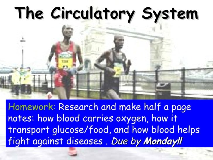The Circulatory System Homework:  Research and make half a page notes: how blood carries oxygen, how it transport glucose/...