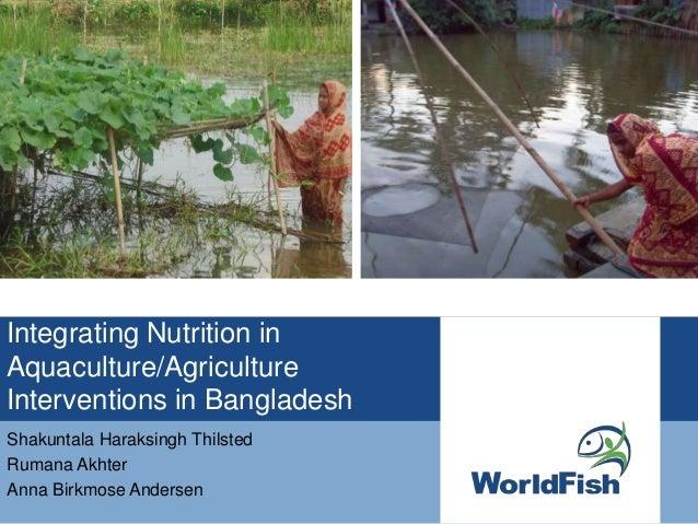 Integrating Nutrition in Integrating Integrating Nutrition in Aquaculture/Agriculture Interventions in Bangladesh Shakunta...