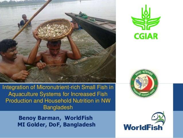Benoy Barman, WorldFish MI Golder, DoF, Bangladesh Integration of Micronutrient-rich Small Fish in Aquaculture Systems for...