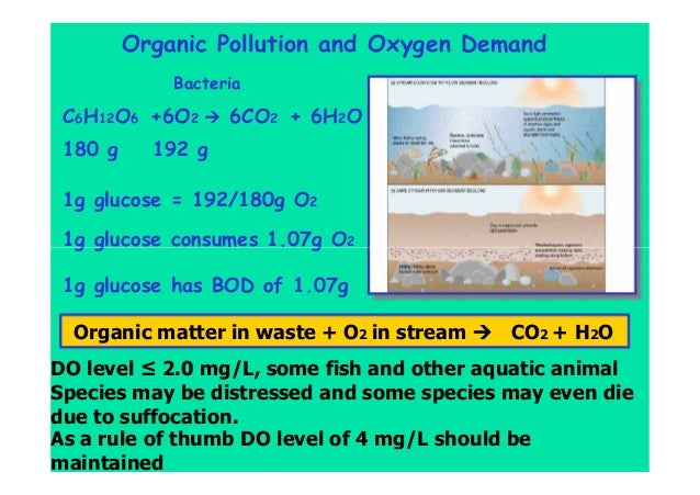 Organic Pollution and Oxygen Demand Bacteria C6H12O6 +6O2 6CO2 + 6H2O 180 g 192 g 1g glucose = 192/180g O2 1g glucose cons...