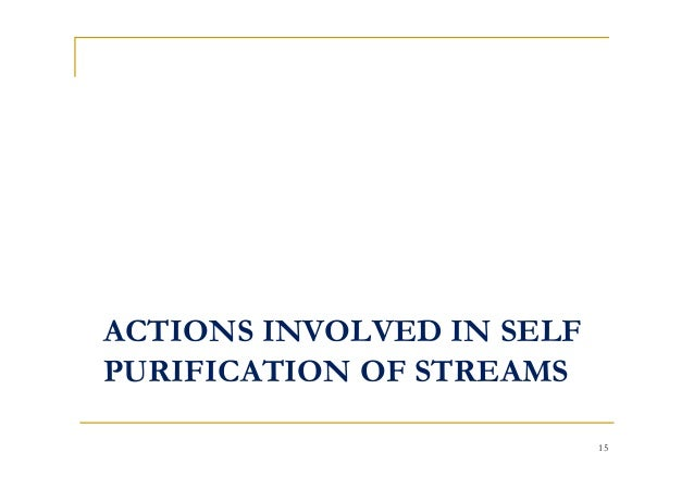 ACTIONS INVOLVED IN SELF PURIFICATION OF STREAMS 15