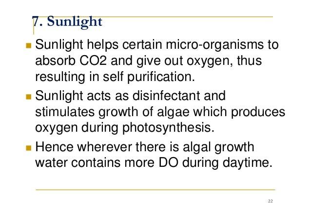7. Sunlight Sunlight helps certain micro-organisms to absorb CO2 and give out oxygen, thus resulting in self purification....