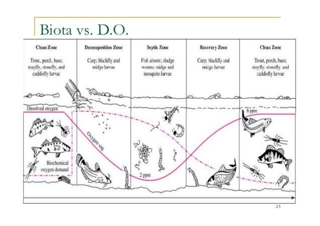 Biota vs. D.O. 25