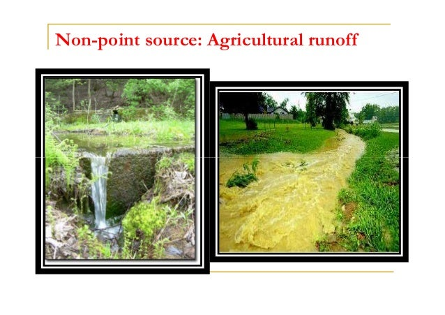 Non-point source: Agricultural runoff