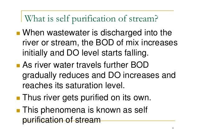 L 29 Do Sag And Self Purification Of Streams