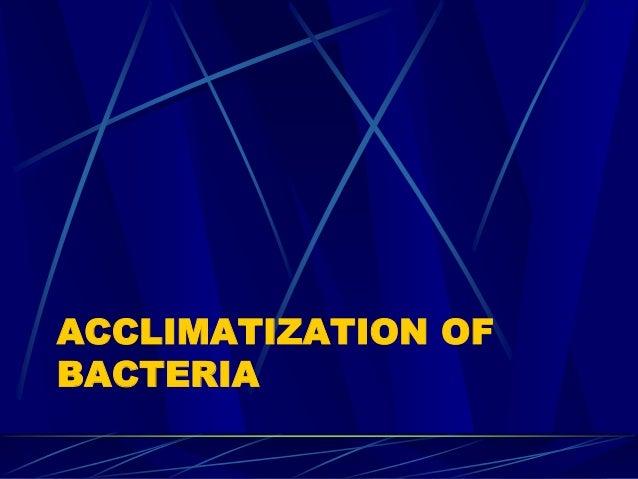 ACCLIMATIZATION OF BACTERIA