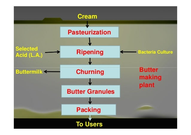 Pasteurization Ripening Cream Bacteria Culture Selected Acid (L.A.) ButterChurning Butter Granules Packing Buttermilk To U...