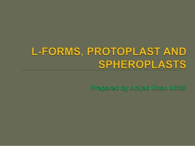 Protoplast isolation technical and teaching notes