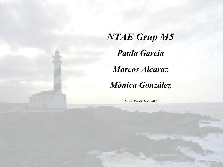 NTAE Grup M5 Paula García Marcos Alcaraz Mònica Gonzàlez 15 de Novembre 2007