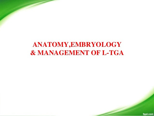 ANATOMY,EMBRYOLOGY & MANAGEMENT OF L-TGA