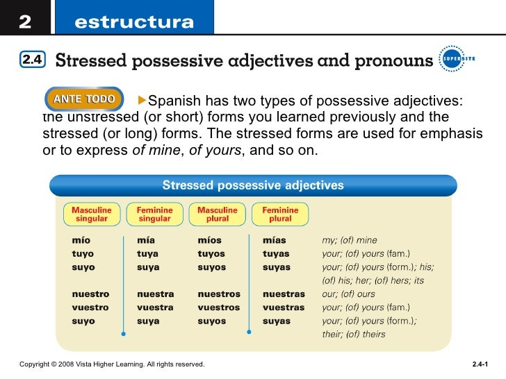 <ul><li>Spanish has two types of possessive adjectives: the unstressed (or short) forms you learned previously and the str...