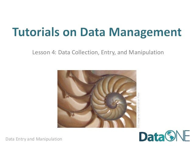 Data Entry and Manipulation Lesson 4: Data Collection, Entry, and Manipulation CCimagebyCobalt123onFlickr