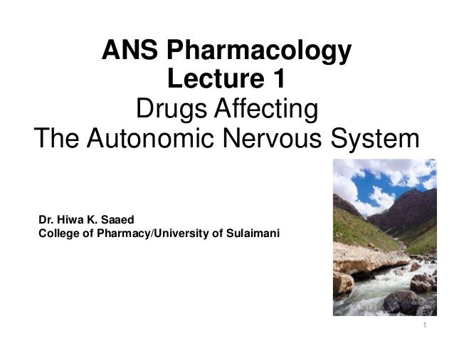 ANS Pharmacology Lecture 1 Drugs Affecting The Autonomic Nervous System Dr. Hiwa K. Saaed College of Pharmacy/University o...