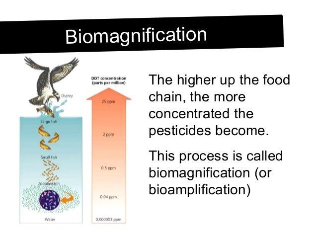 Grade 9, U3-L10 pesticides and biomagnification