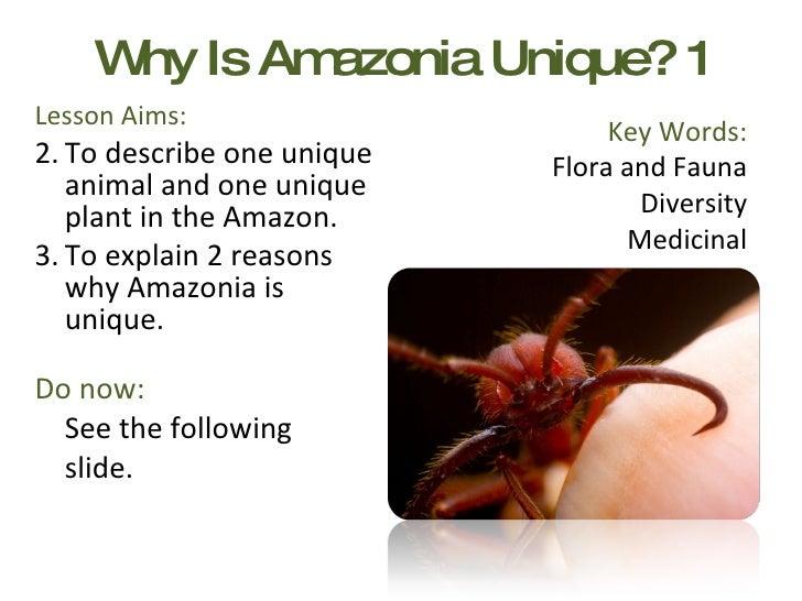 Why Is Amazonia Unique? 1 <ul><li>Lesson Aims: </li></ul><ul><li>To describe one unique animal and one unique plant in the...