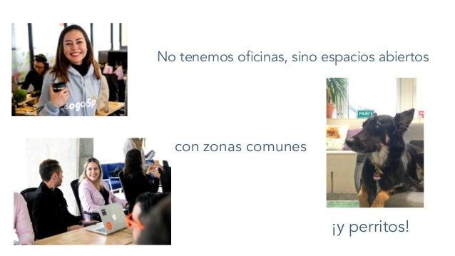 No tenemos oficinas, sino espacios abiertos con zonas comunes ¡y perritos!