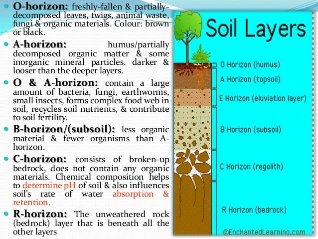 L14 for What are the different layers of soil