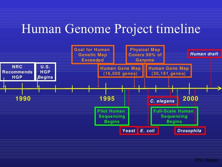the potential of gene therapy and advancemnt in the human genome project The human genome project aimed to map the  contributed to this 'typical' human genome sequence gene  the potential for medical advancement is.