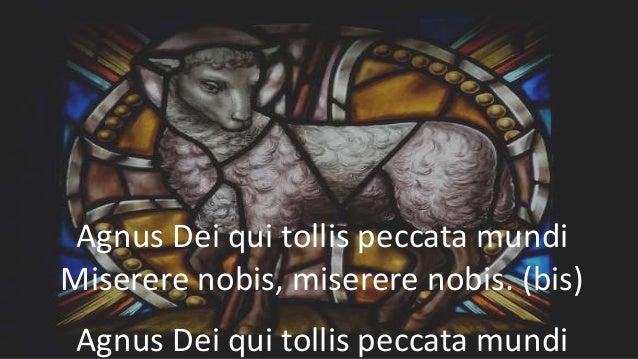 Agnus Dei qui tollis peccata mundi Miserere nobis, miserere nobis. (bis) Agnus Dei qui tollis peccata mundi