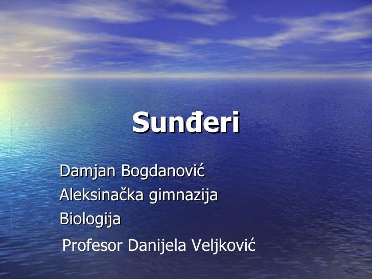 SunđeriDamjan BogdanovićAleksinačka gimnazijaBiologijaProfesor Danijela Veljković