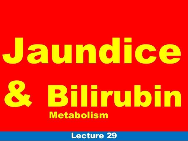 Jaundice& BilirubinLecture 29Metabolism