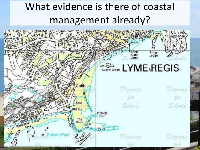 examine the success of coastal protection Start studying bioexam3  what probably explains why coastal and inland garter  you are working for the environmental protection agency and researching.