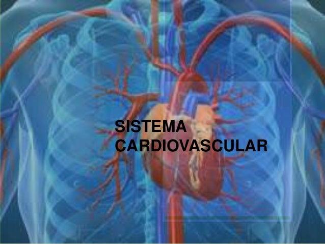 Valoración sistema cardiovascular en el niño