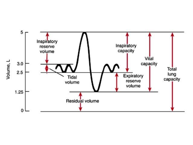 L4 spirometer