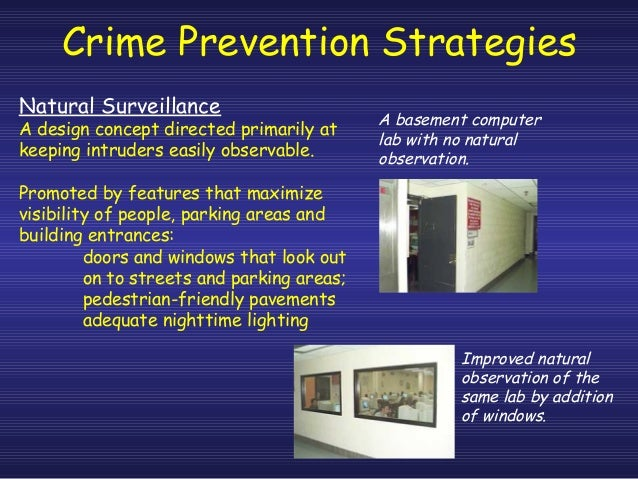 Directed writing article crime prevention definition