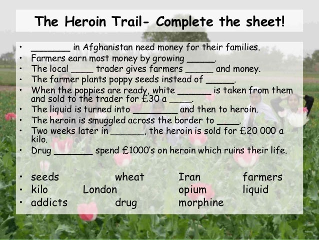 the heroin trail essay example A version of this article appears in print on april 20, 1994, on page b00004 of the national edition with the headline: heroin trail: .