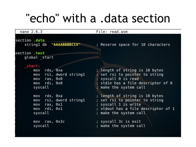htop explained
