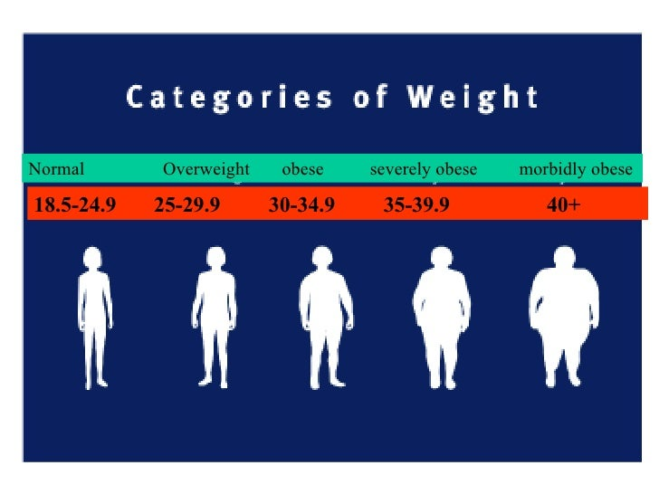 obese vs morbidly obese