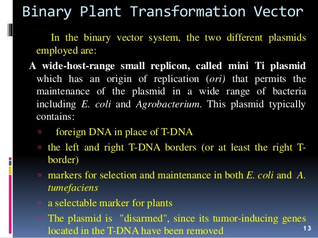 Cointegrate and binary vectors youtube.