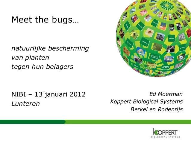 Ed Moerman Koppert Biological Systems Berkel en Rodenrijs Meet the bugs… natuurlijke bescherming van planten tegen hun bel...