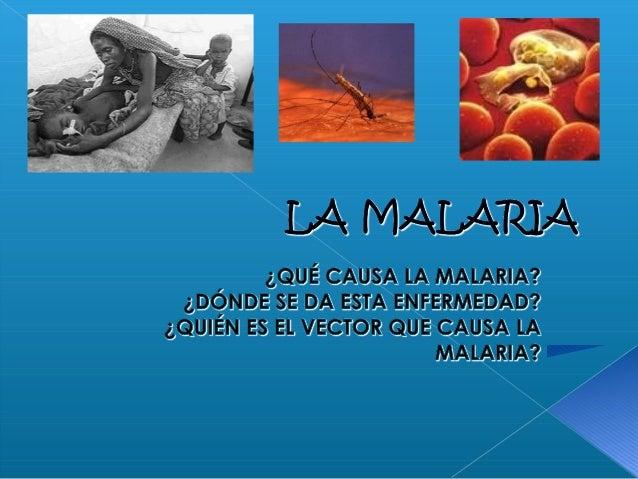  El parásito causante de la malaria. El mosquito que porta la malaria. La malaria en el mundo. La vacuna contra la mal...