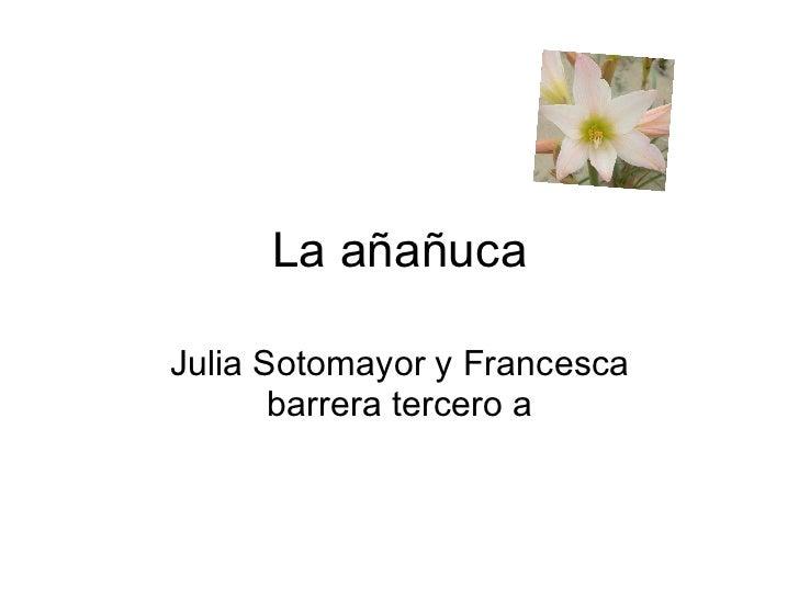 La añañuca Julia Sotomayor y Francesca barrera tercero a