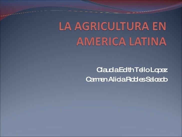 Claudia Edith Tello Lopez Carmen Alicia Robles Salcedo