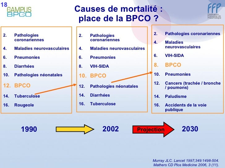 Causes de mortalité : place de la BPCO ? <ul><li>Pathologies coronariennes </li></ul><ul><li>Maladies neurovasculaires </l...