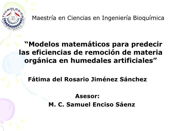 """<ul><li>Maestría en Ciencias en Ingeniería Bioquímica </li></ul><ul><li>"""" Modelos matemáticos para predecir las eficiencia..."""