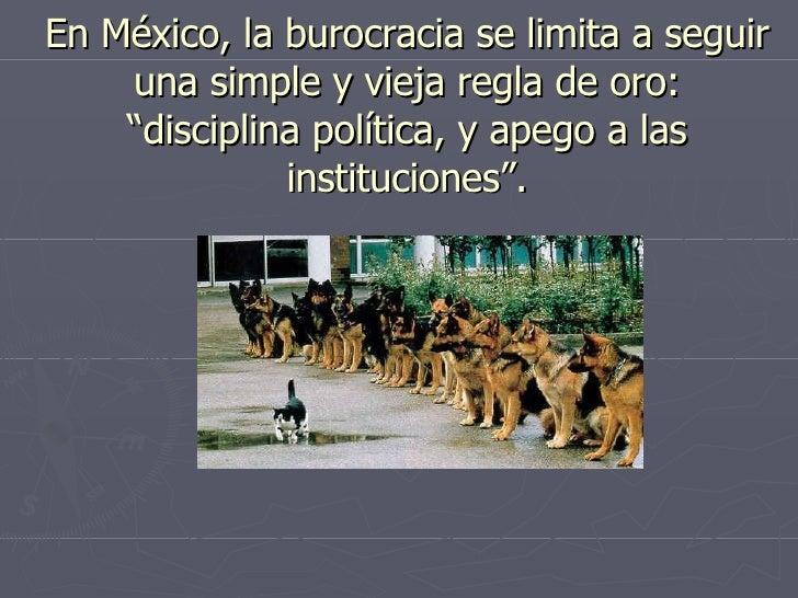 """En México, la burocracia se limita a seguir una simple y vieja regla de oro: """"disciplina política, y apego a las instituci..."""