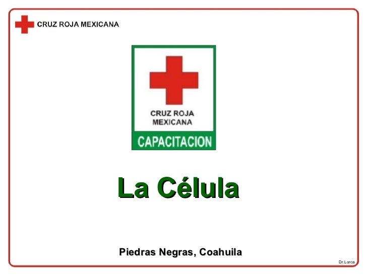Dr.Lorca La Célula Piedras Negras, Coahuila